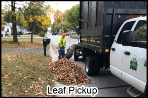 Leaf Pickup Schedule icon